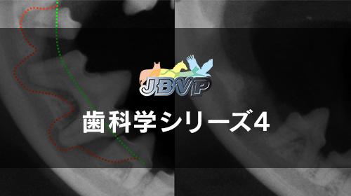 歯科学04「歯科治療に欠かせない歯科X線の適応,撮影,読影方法 − 歯科X線検査なしに歯科治療はできません! −」