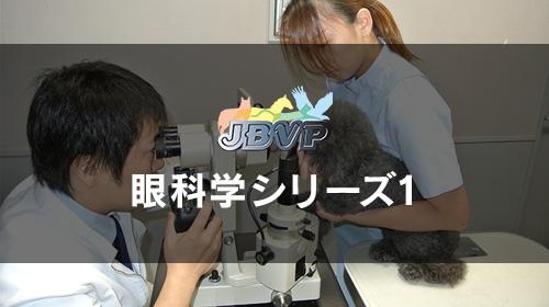 眼科学シリーズ01「眼科検査法」