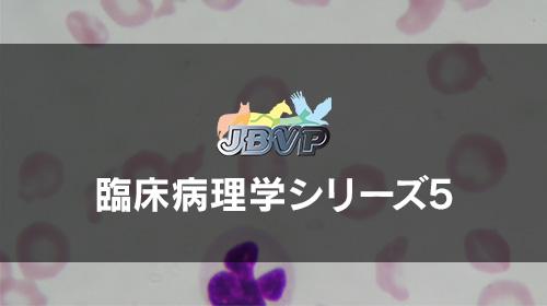 臨床病理学05「CBC − 赤血球系の評価 −」