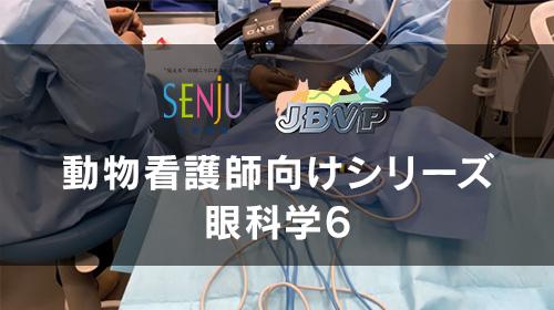 眼科手術ー手術失の準備等と主な眼科手術