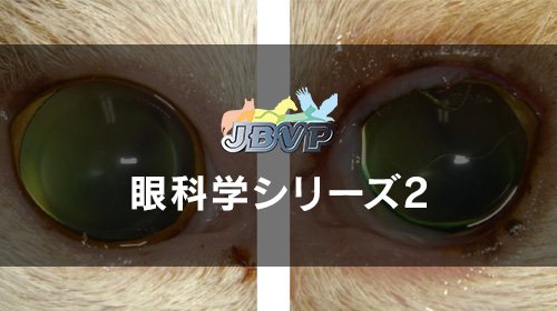 眼科学シリーズ02「眼瞼,結膜の疾患」